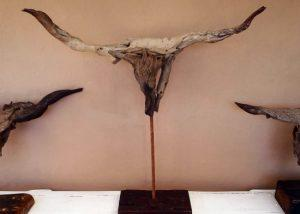 Driftwood Sculptures│Animal Horns & Skulls 1