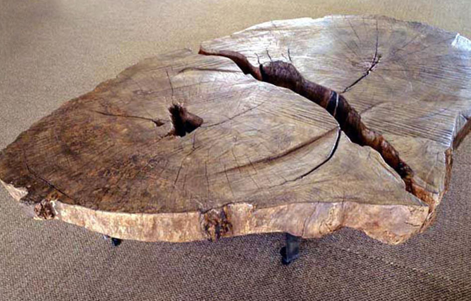 African tree trunk coffee table | Phases Africa | African Decor & Furniture