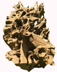 African Hardwood Tree Root Table Base 7