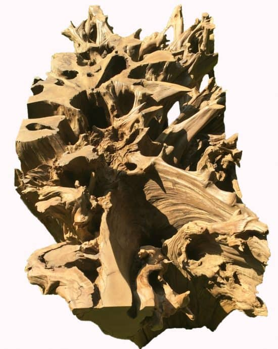 African Hardwood Tree Root Table Base 9