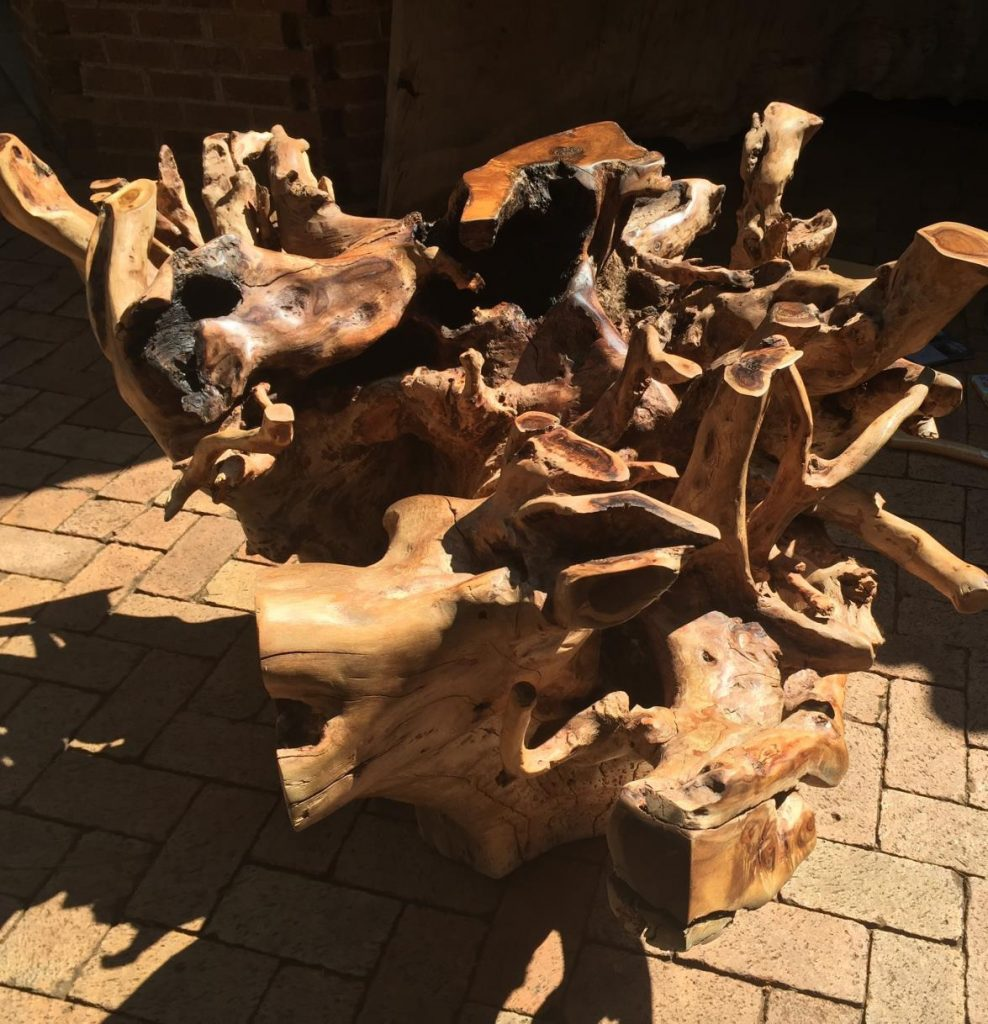Tree Trunk Coffee Table South Africa: TREE ROOT TABLE BASES - Phases Africa