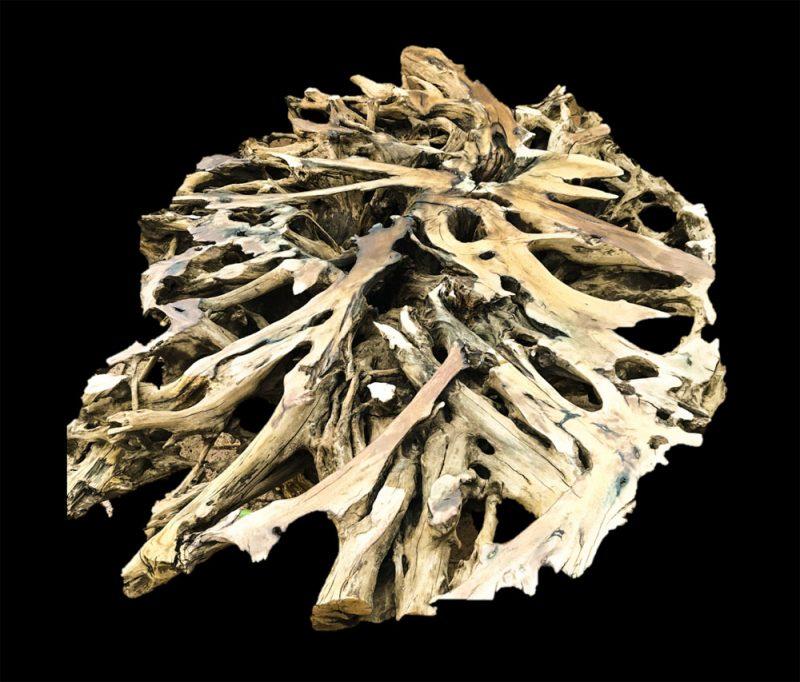 Matzeri Tree Root Table Base 1300 x 1000